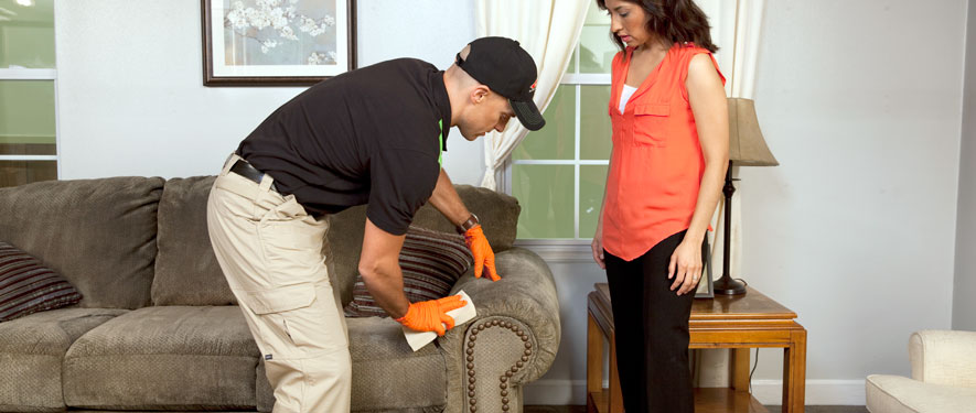 Simi Valley, CA carpet upholstery cleaning